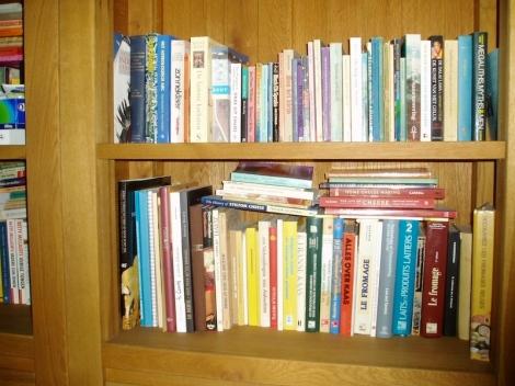 Een klei deel van mijn boekenkast