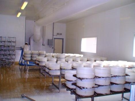 Productieruimte Brie de Meaux