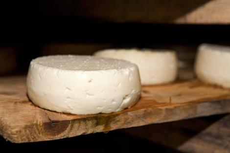 Het rijpen van kaas