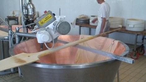 Parmesan productie
