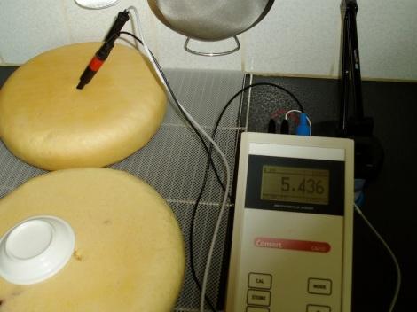 pH in de kern van kaas met gewoon water