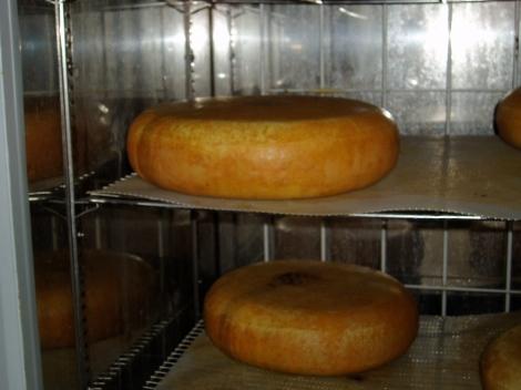 Kaas gewassen met gewoon water