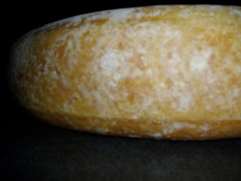 Kaaskorst van de gewone kaas na 12 weken