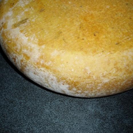 Kaas gewassen met leidingwater (GW)