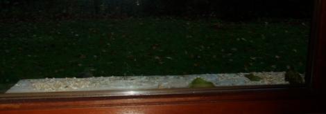 Leeg blijft de vensterbank