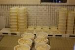 Vanaf de tweede dag worden de kazen met grof zout ingewreven.