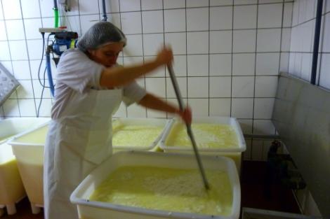 Madeleine maakt rawmelkse, biologische Herve kaas