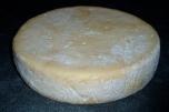 Kaas 3 gemaakt op 16-03-14, foto na vijftien dagen (01-04-14)