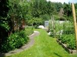 29 mei - de oostkant van de tuin