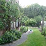 4 mei - de oostkant van de tuin