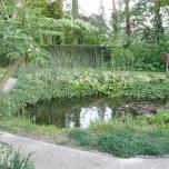 4 mei - het is nog stil rond de vijver