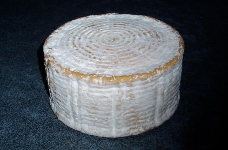 Kaas met natuurkorst, tien weken oud