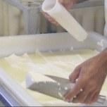 Het uischeppen van de verse wringel in de kaasvormen