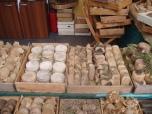 Slow Cheese 2005 - een heel assortiment