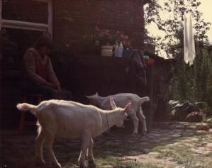 Het begon met twee geiten in 1981