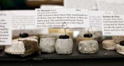 Inspiring cheese description