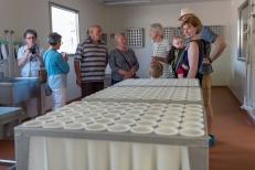 Vijf uitverkorenen kregen een exclusieve rondleiding in de kaasmakerij