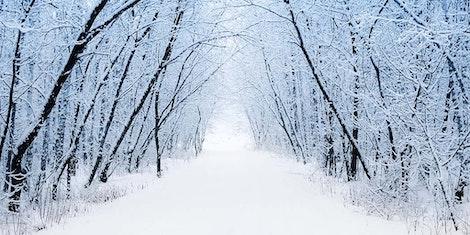 Het Wintert